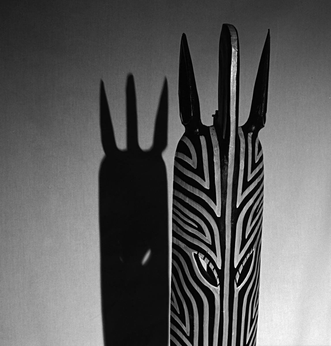 Mean Zebra<br /> 2007